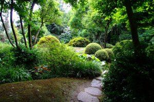 navstivte-botanickou-zahradu-troja1