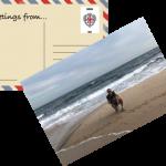 Postcards from Sid – Ciao! Buongiorno! Greetings from Sardinia, Italy!