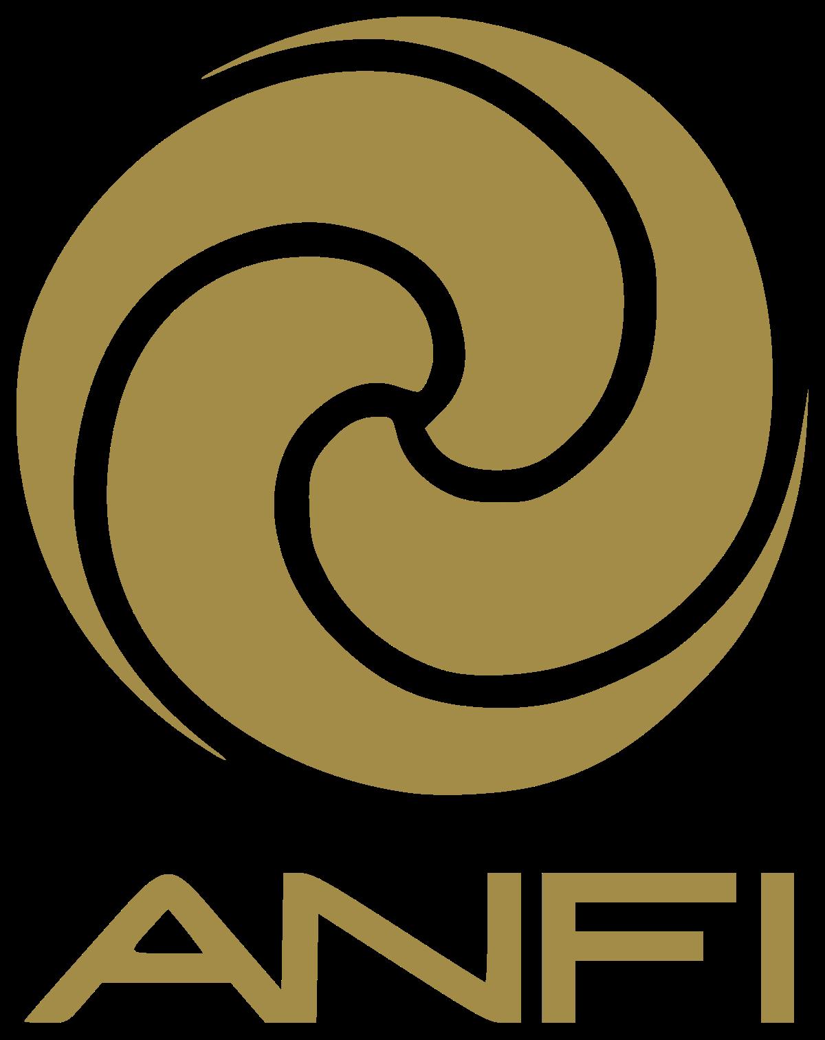 Anfi Group